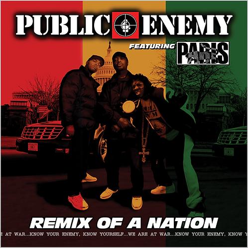Public Enemy Feat. Paris - Remix Of A Nation