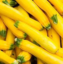 yellow-squash.jpg