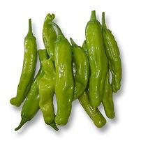 Shishito-Pepper-Seeds_1024x1024.jpg