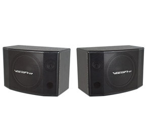 SV600 Karaoke Speakers (pair)