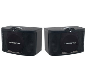 SV-408 Karaoke Speakers (pair)