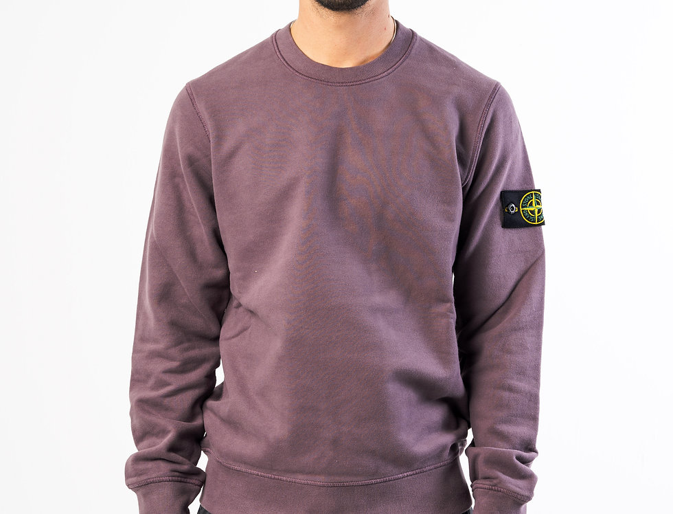 Stone Island Sweatshirt In Sage