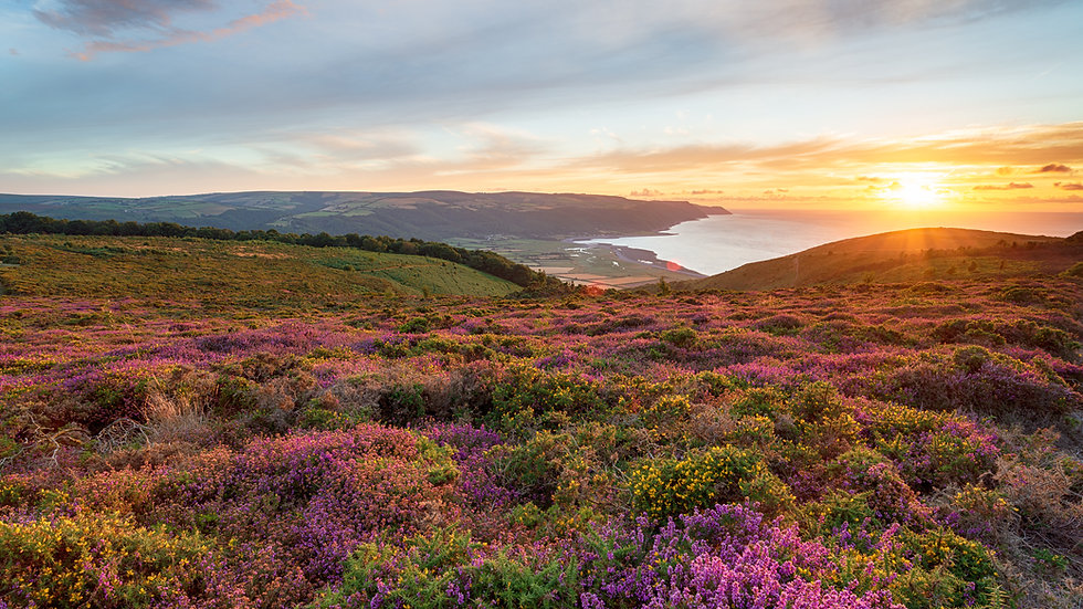 Exmoor, Heddon's Mouth & Woody Bay Guided Walk