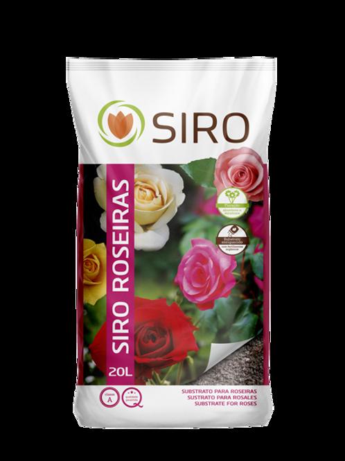 SIRO ROSEIRAS 20 LTS