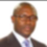 Emmanuel Ashu-Agbor Ayuk.png