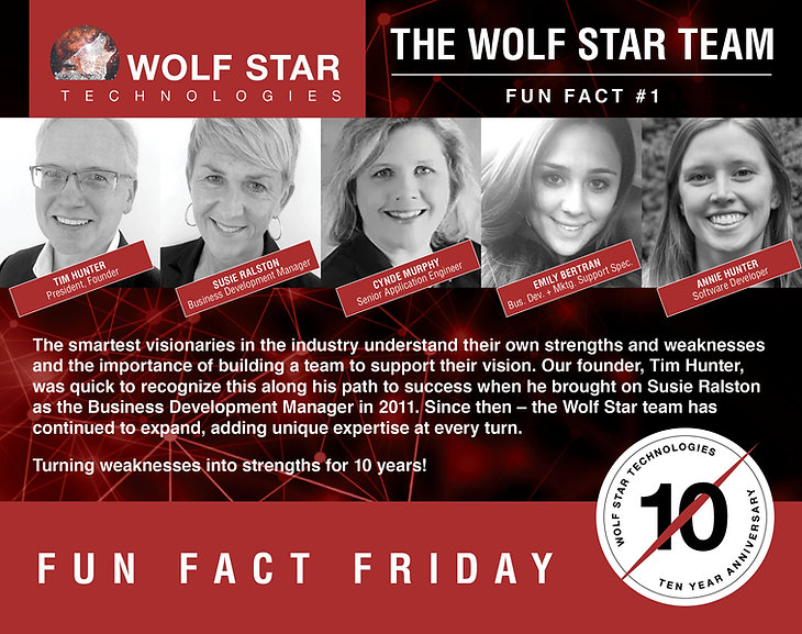 Wolf Star Technologies Team