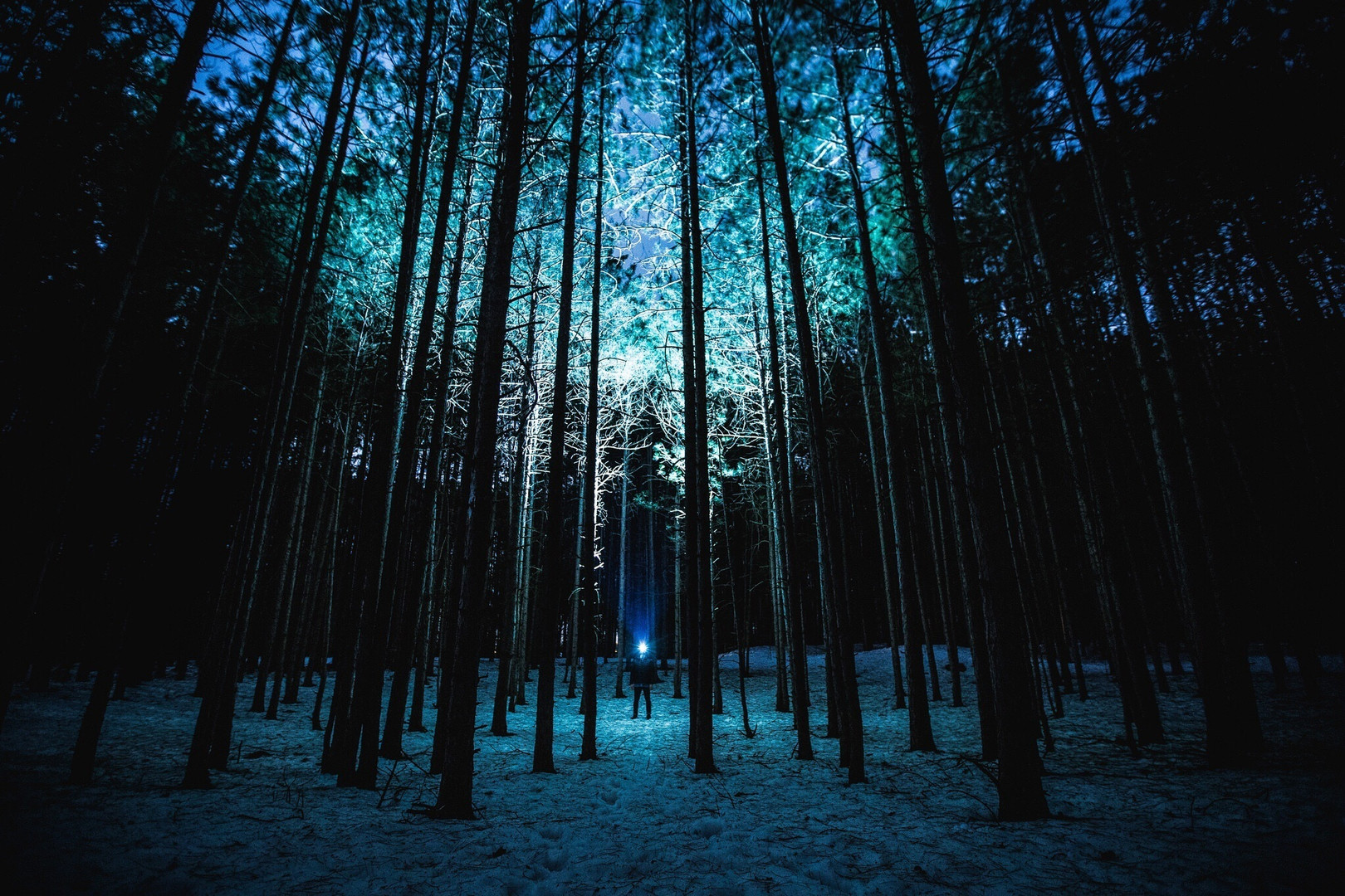 Night Light - Anonymous Artist.jpg