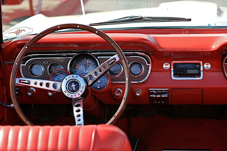 Mustang-Denise Wait.JPG