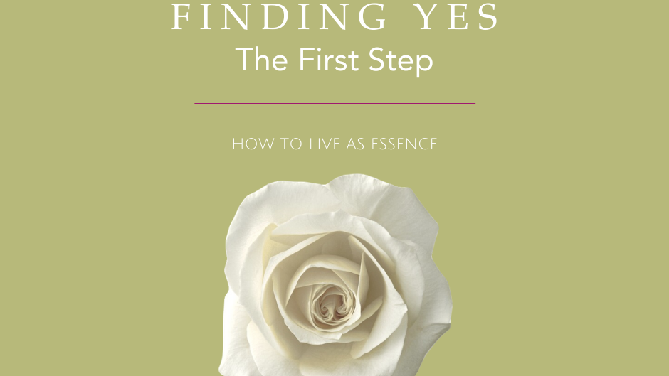Finding Yes: The First Step | Digital E-Book & Video Tutorials| Digital Download