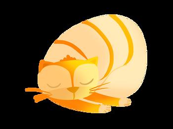nazli-kedi.png