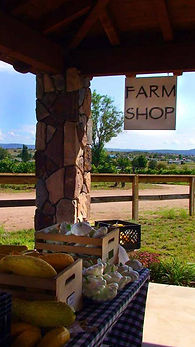 Local produce for sale at Bruzzi Vineyard farm stand