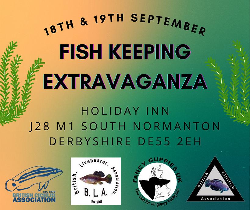 Fishkeeping Extragavanza 1.png