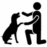 Dog Training.png