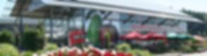 Bild_Markthalle_Sommer_modified_low_reso