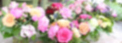 IMG_6362_low_resolution.jpg