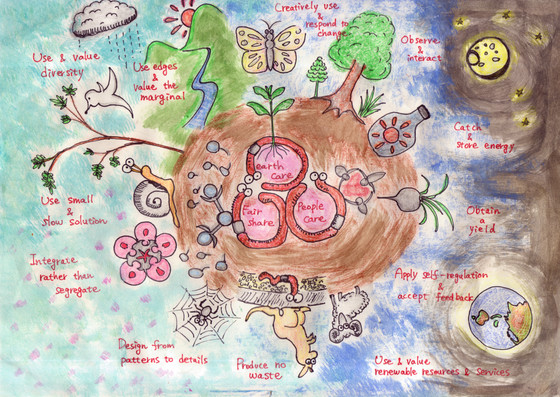 Permaculture and community gardens