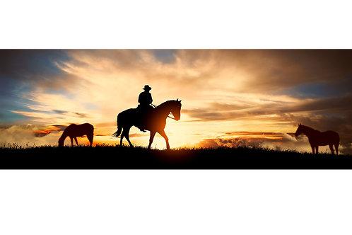 Cowboy im Sonnenuntergang
