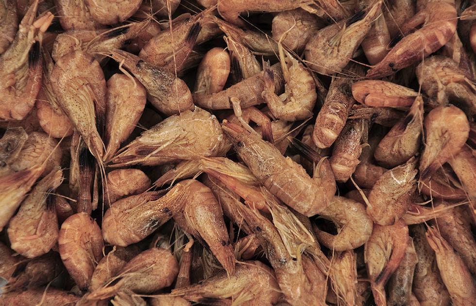 Crevettes grises_cuites_2.jpg