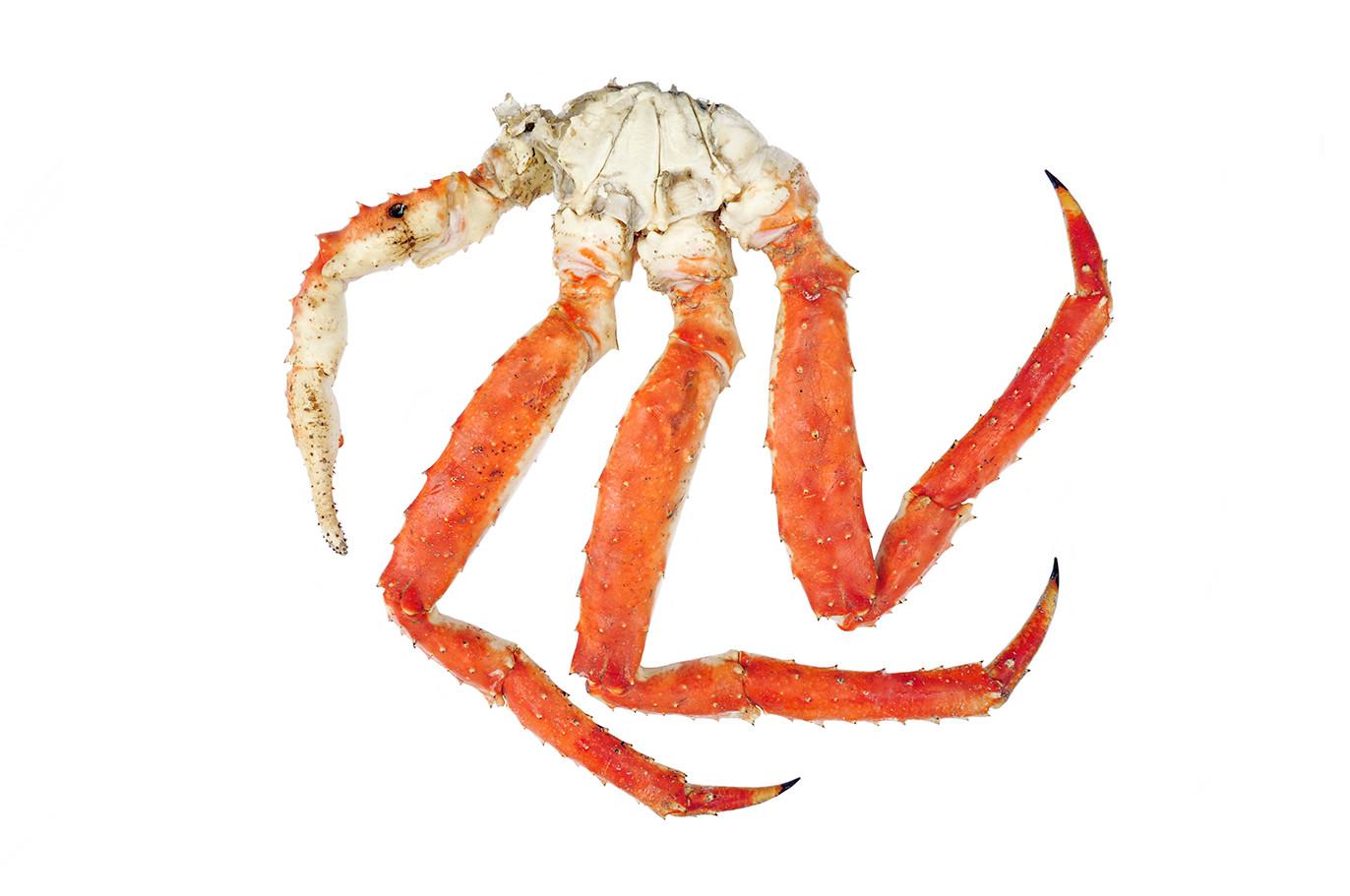 Crabe Royal_cuit.jpg