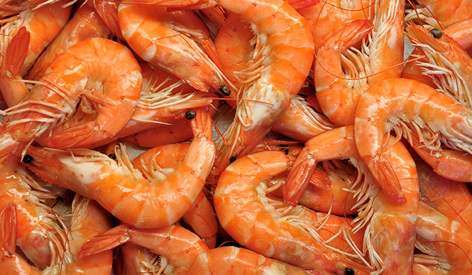 Crevettes_cuites