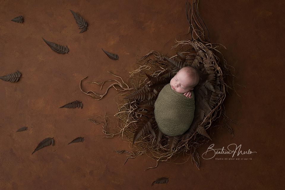 quel photographe naissance dans le gard