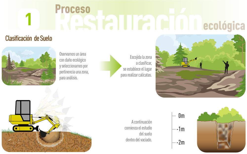 02-Restauracion-Ecologica-1000px-01