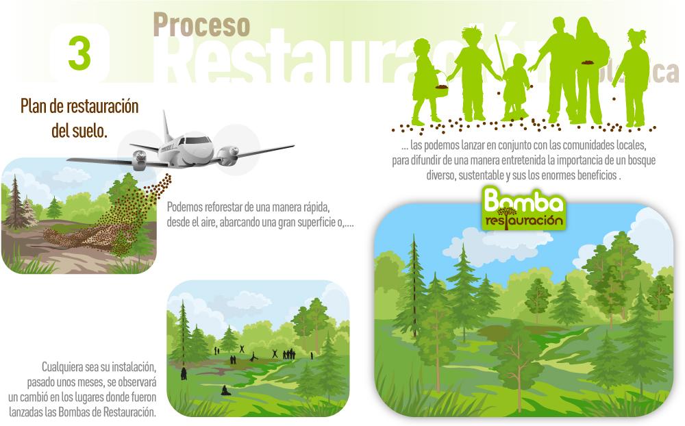 02-Restauracion-Ecologica-1000px-03
