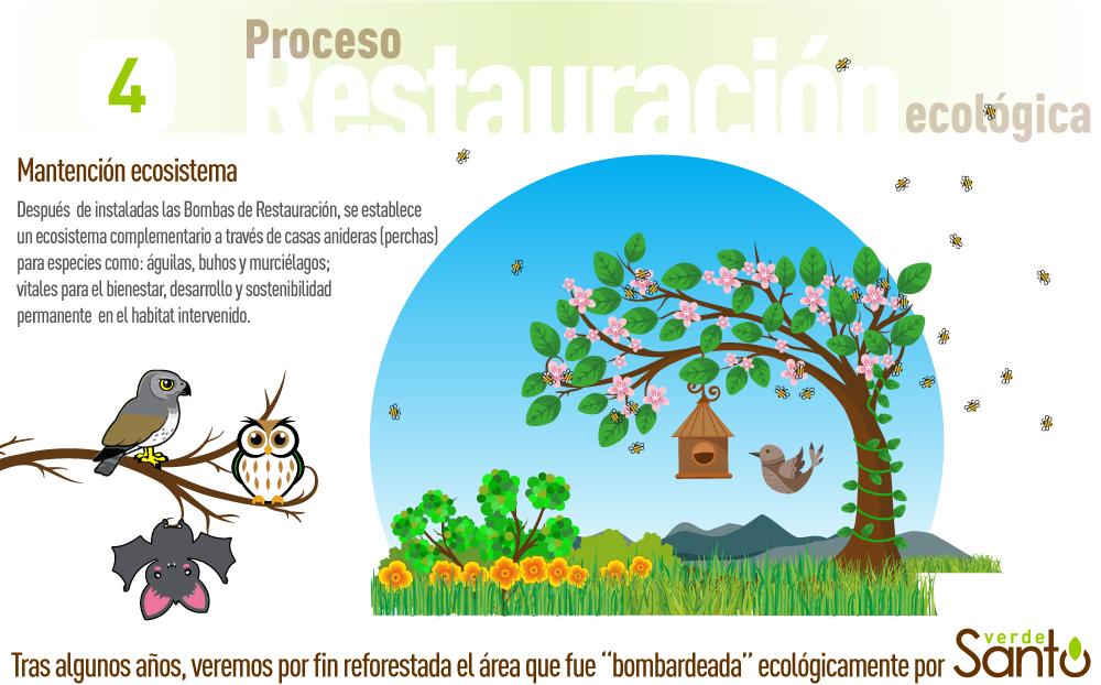 02-Restauracion-Ecologica-1000px-04