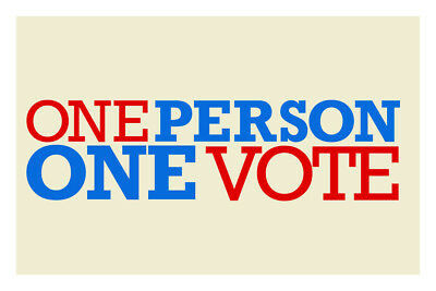 Voter Fraud: One Person, One Vote