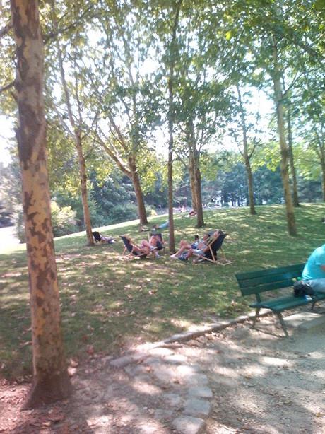 Moment de détente au parc