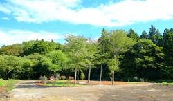 お散歩コースは見晴しが最高!季節の花木や果樹が楽しめます!