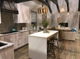 She Shed Kitchen & Living
