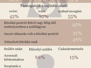 A magyar szülészetekről