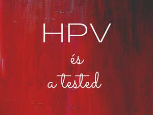Mit üzen a HPV a testednek?