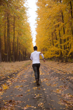 'Fall' Before