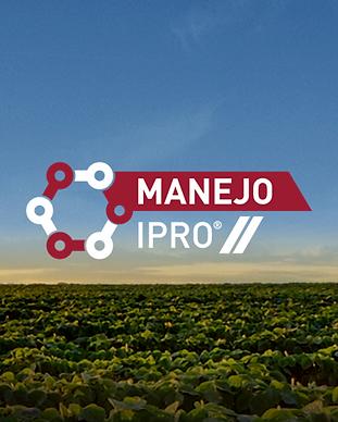 Manejo IRPO-2.png