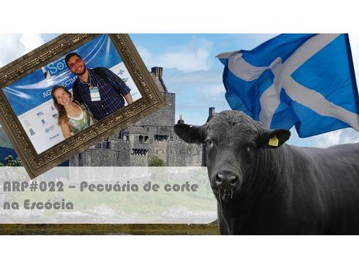 ARP#022 - Pecuária de corte na Escócia