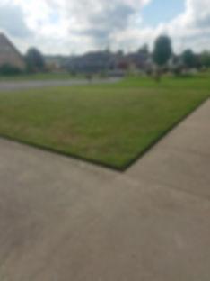 grandma yard.jpg