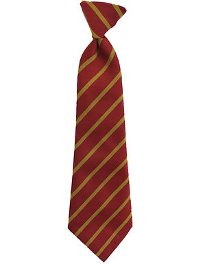 Great Sankey Primary - School Tie