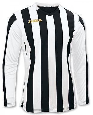Joma Copa L/S Shirt - Adult