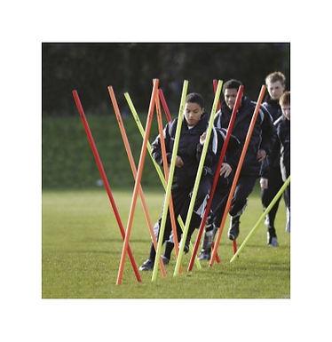 Precision Boundary Poles (Set of 12)