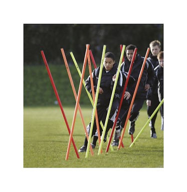 Precision Boundary Poles (Set of 12)