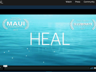 Invitation to watch the movie HEAL