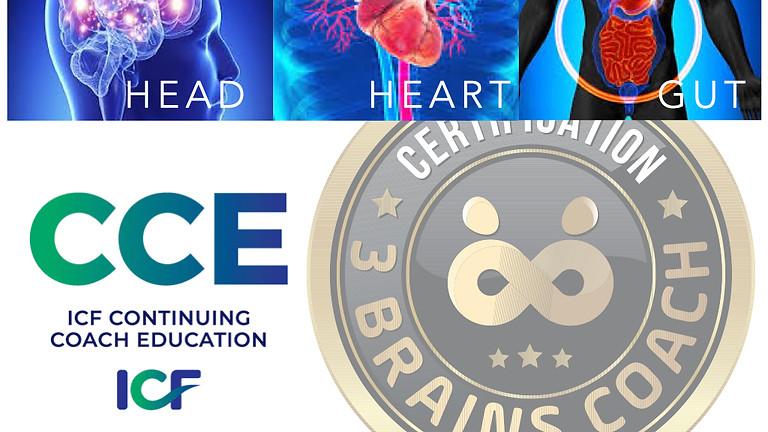 3 Brains Coach Certification Training ICF 30 CCEU's