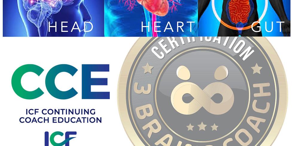 3 Brains Coach Certification at HypnoThoughtsLive Las Vegas