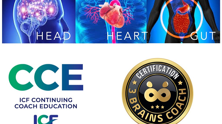 3 Brains Coach Certification Online Training ICF 30 CCEU's