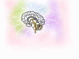 What does Neuroscience really bring to Leadership, Sales or Personal Development?
