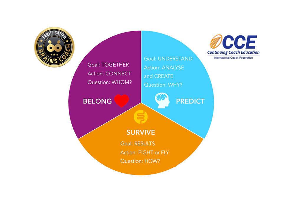 ICF CCE certified