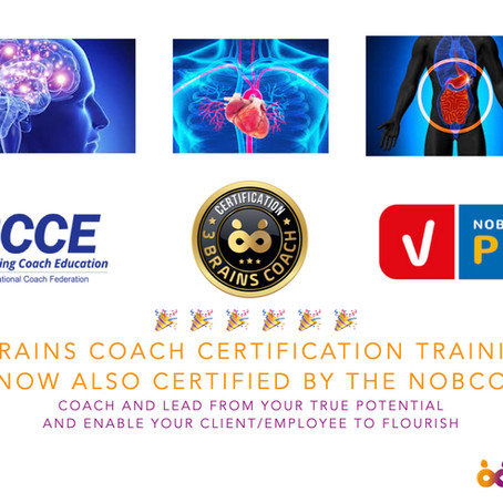 3 Brains Coach Certification training now also certified by the NOBCO