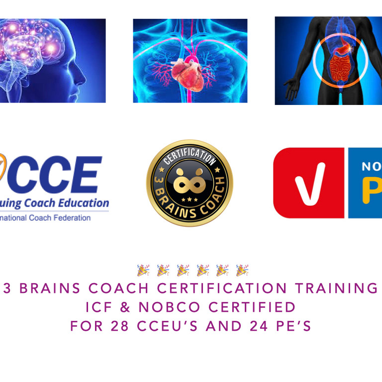 3 Brains Coach Certification ICF CCEU accredited